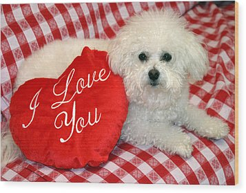 Fifi Loves You Wood Print by Michael Ledray