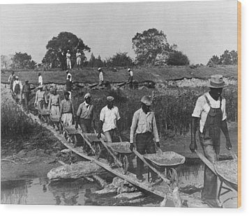 Fifteen African American Laborers Wood Print by Everett