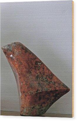 Fifth Chakra Humming Bird Wood Print by Frank Pasquill