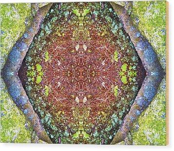 Fifth Dimension Wood Print