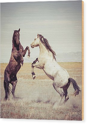 Wood Print featuring the photograph Fighting Stallions by Mary Hone