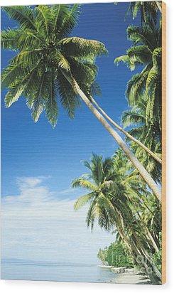 Fiji, Vanua Levu Wood Print by Peter Stone - Printscapes