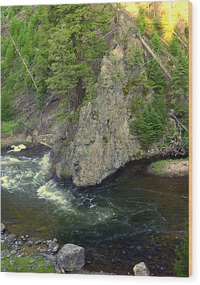 Fin On The Firehole Wood Print by Marty Koch