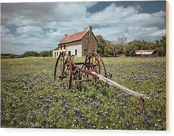 Wood Print featuring the photograph Final Resting Place by Linda Unger
