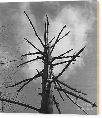 Final Stand Wood Print by Arni Katz