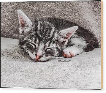 Finally Asleep  Copyright Mary Lee Parker 17  Wood Print