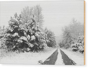 Wood Print featuring the photograph Find A Pretty Road by Lori Deiter