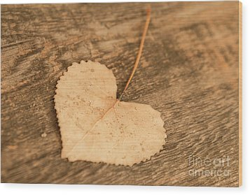 Wood Print featuring the photograph Finding Hearts by Ana V Ramirez