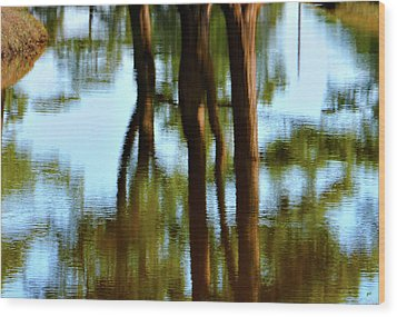 Fine Art Photography - Reflections Wood Print by Gerlinde Keating - Galleria GK Keating Associates Inc