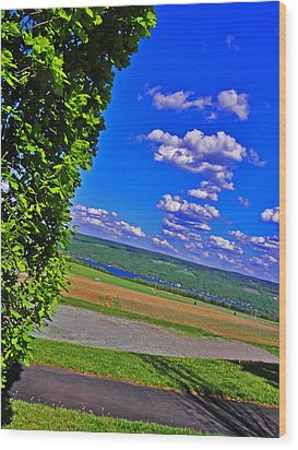 Finger Lakes Country Wood Print by Elizabeth Hoskinson