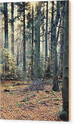 Fir Forest-2 Wood Print by Henryk Gorecki