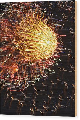 Fire Flower Wood Print by Karen Wiles