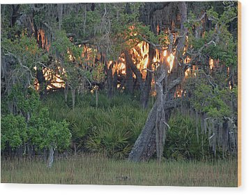 Wood Print featuring the photograph Fire Light Jekyll Island 02 by Bruce Gourley