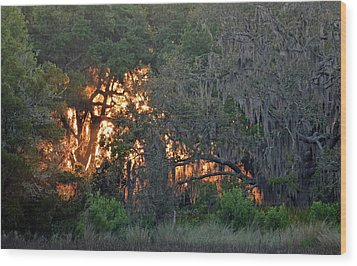 Wood Print featuring the photograph Fire Light Jekyll Island 03 by Bruce Gourley