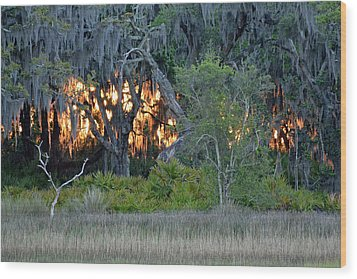 Wood Print featuring the photograph Fire Light Jekyll Island by Bruce Gourley