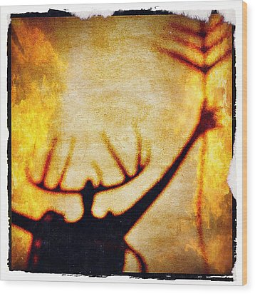 Wood Print featuring the photograph Fire Shaman by Paul Cutright