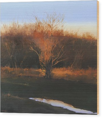 Wood Print featuring the painting Fire Tree 2 by Cap Pannell