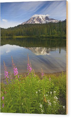 Fireweed Reflections Wood Print by Mike  Dawson