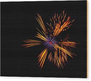 Firework Fun Wood Print by Dawn OConnor