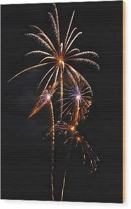 Fireworks 5 Wood Print by Michael Peychich