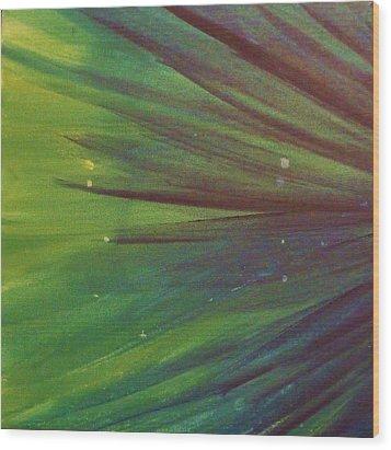 Fireworks IIi Wood Print by Anna Villarreal Garbis