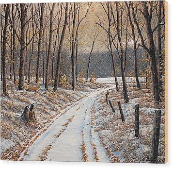 First Day Of Winter Wood Print by Jake Vandenbrink
