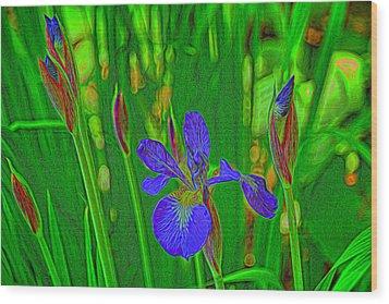 First Iris To Bloom Wood Print