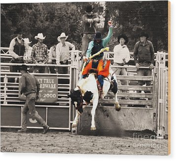 First Out Of The Chute Wood Print