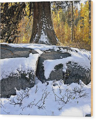 Wood Print featuring the photograph First Snow by Larry Darnell