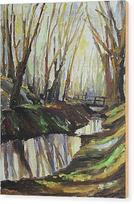 First Sun Of Spring Wood Print by Barbara Pommerenke