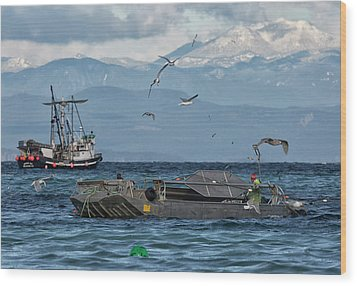 Wood Print featuring the photograph Fish Are Flying by Randy Hall