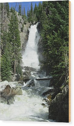 Fish Creek Falls Wood Print by Julie Rideout