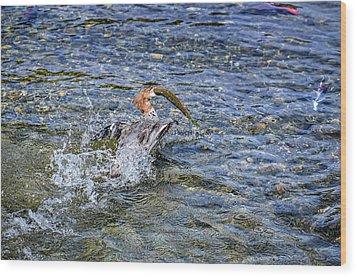 Wood Print featuring the photograph Fish Gulp by David Lawson