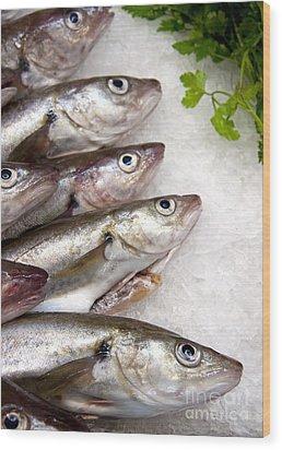 Fish On Ice Wood Print by Jane Rix
