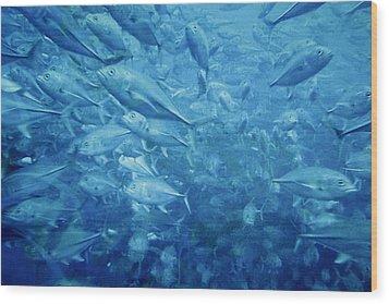 Fish Schooling Harmonious Patterns Throughout The Sea Wood Print by Christine Till