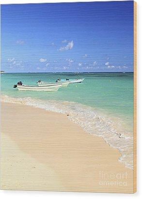 Fishing Boats In Caribbean Sea Wood Print by Elena Elisseeva