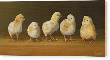 Five Chicks Named Moe Wood Print by Bob Nolin