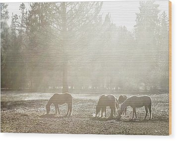 Five Horses In The Mist Wood Print