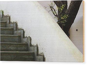 Five Steps To Glory Wood Print by Prakash Ghai