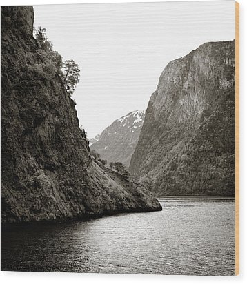 Fjord Beauty Wood Print by Dave Bowman