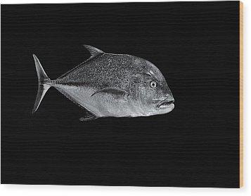 Fla-150811-nd800e-26052-bw-selenium Wood Print