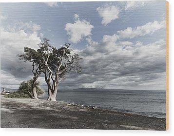 Fla-150717-nd800e-25953-color Wood Print