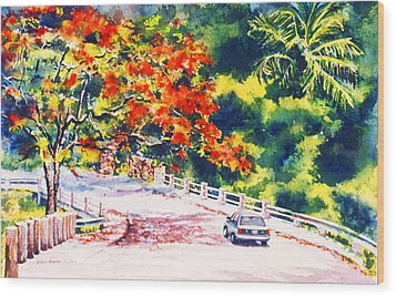 Flamboyant At Crashboat Beach Wood Print by Estela Robles
