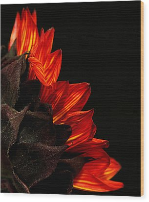 Wood Print featuring the photograph Flames by Judy Vincent