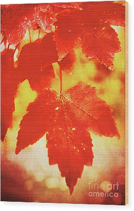 Flaming Autumn Wood Print