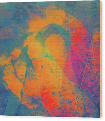 Wood Print featuring the photograph Flaming Foliage 1 by Ari Salmela