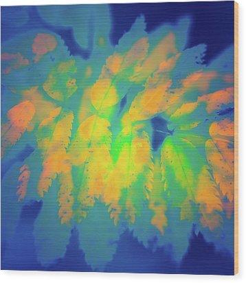 Wood Print featuring the photograph Flaming Foliage 2 by Ari Salmela