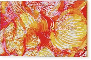 Flaming Hosta Wood Print