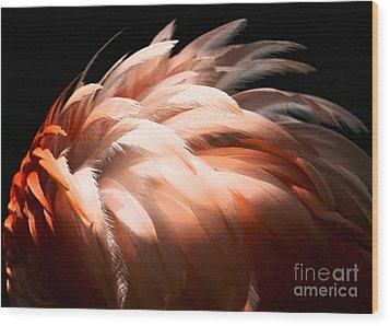 Flamingo Feathers Wood Print by Sabrina L Ryan