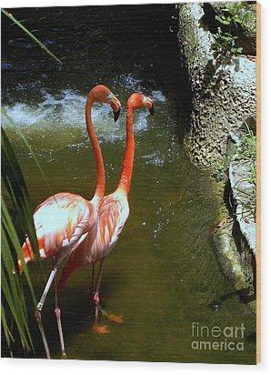 Flamingo Pair Wood Print
